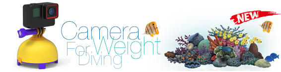 alt Camera Weight for Diving